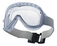 Cleanroom Goggles