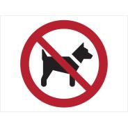 No Dogs Symbol Signs